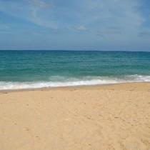what-a-beach-210x210