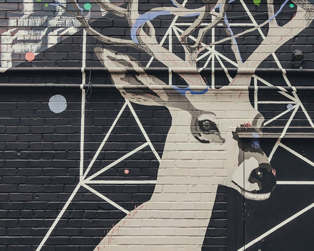 Aaron-Cahill-Deer-Mural-660187-edited.jpg