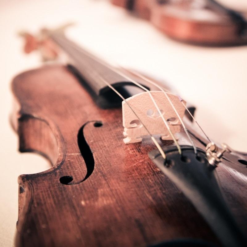 8-Violins.jpg