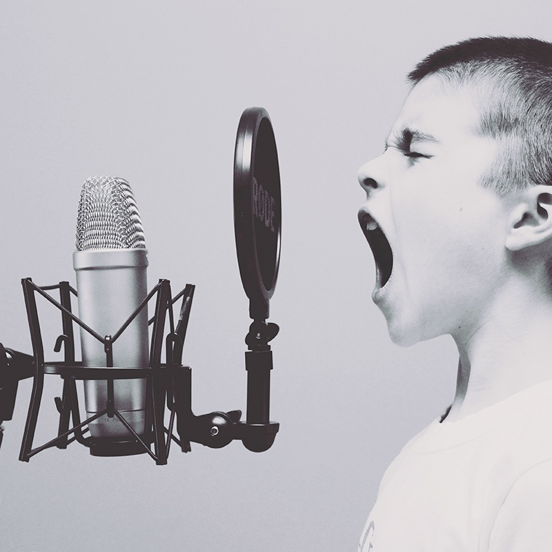 Thought leaders opt to speak into the microphone with influencer marketing
