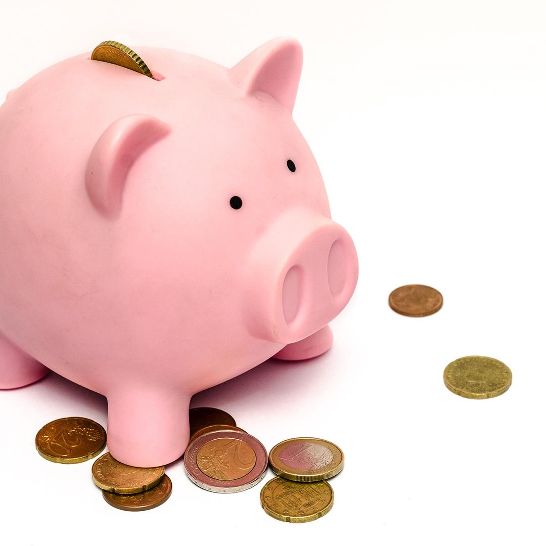 business-money-pink-coins_copy.jpg