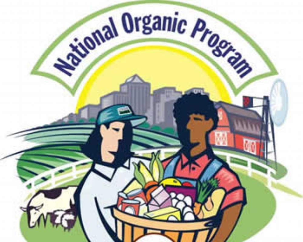 National_Organic_Program-924487-edited.jpg