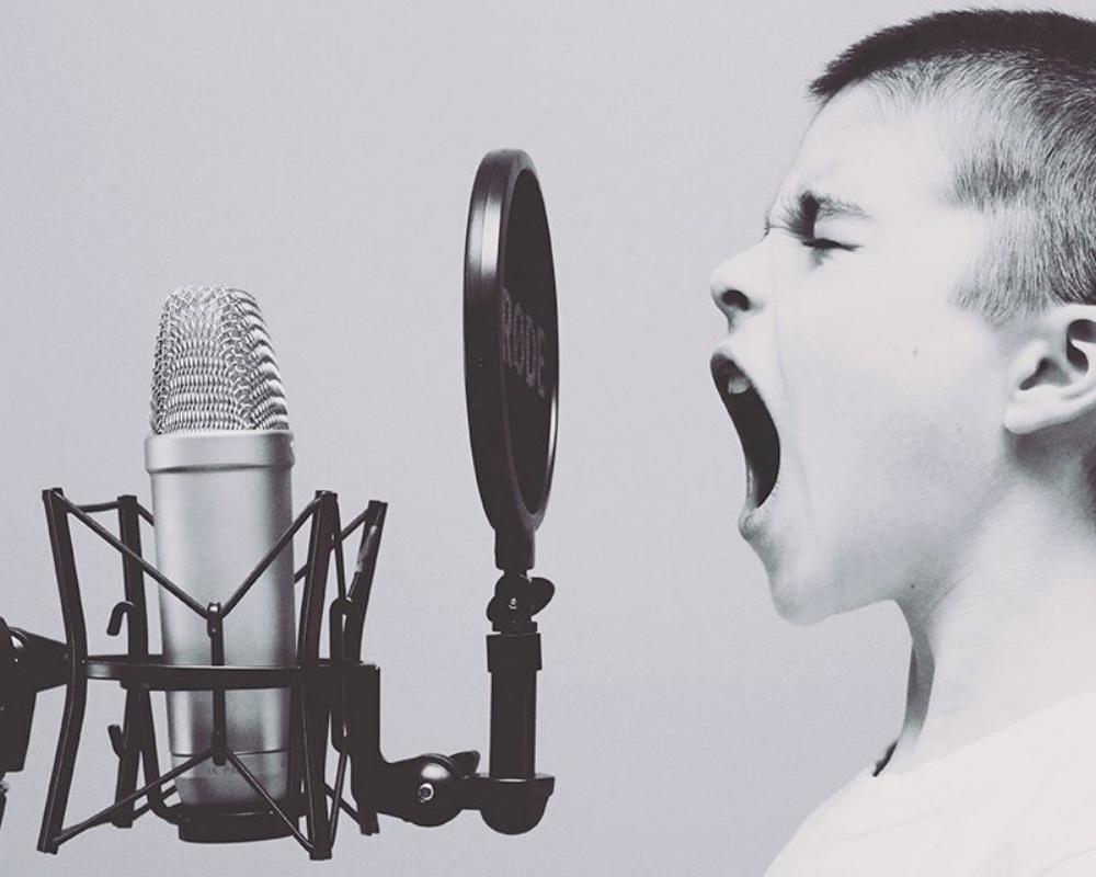 Screaming_Into_Microphone-281319-edited.jpg