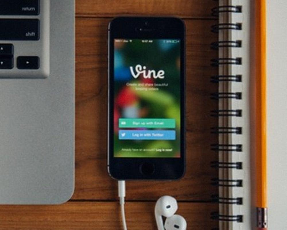 VIne.jpg-176463-edited.jpeg