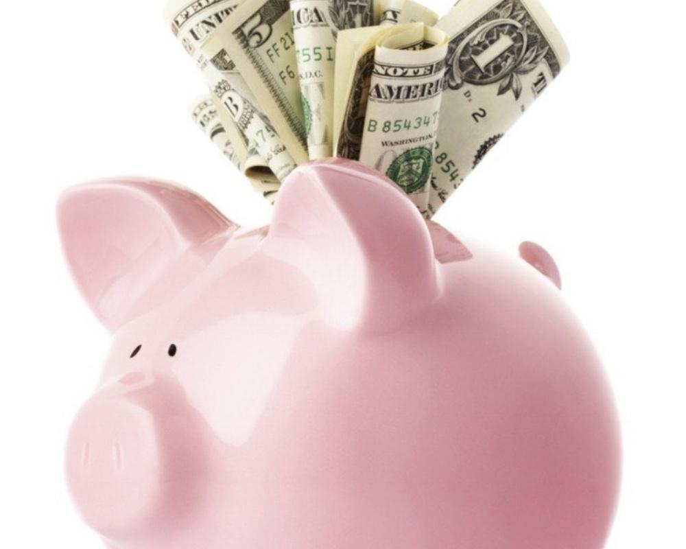 piggybank-with-dollars.jpg-762x1024-980538-edited.jpeg