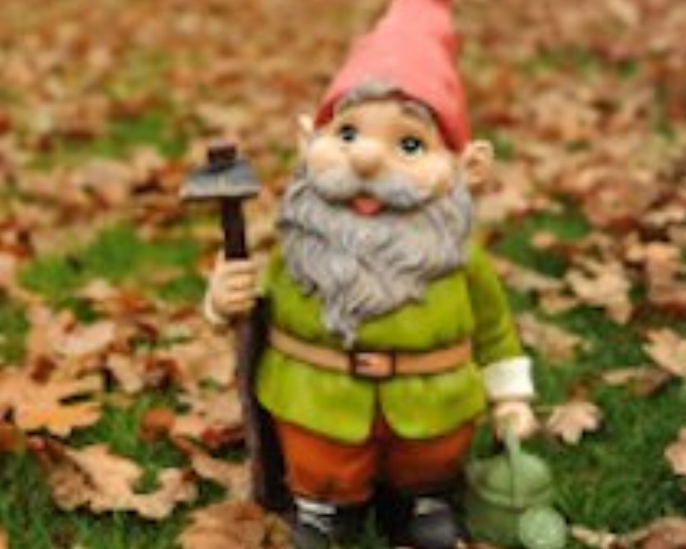 stock-photo-15246684-gnome-and-autumn-leaves1-088683-edited.jpg