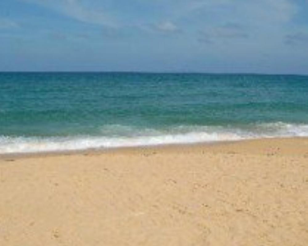 what-a-beach-210x210-081432-edited.jpg