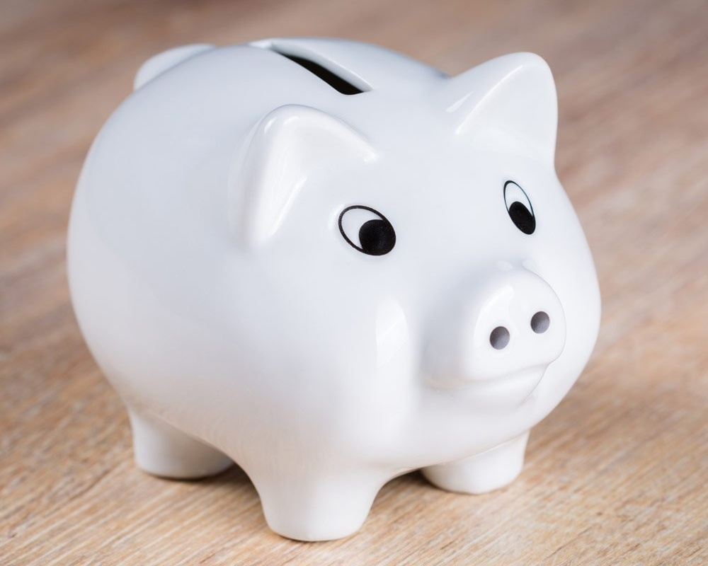 white-piggy-bank-767761-edited.jpg